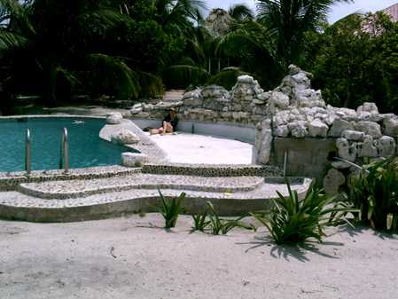 Pool - wading pool emptied to have bottom painted.  Guest takes a rest.