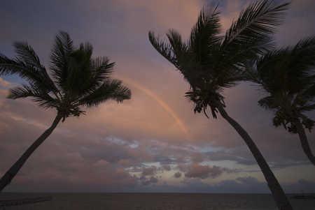 1020_rainbow2.jpg