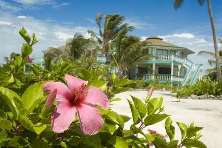 costa maya-10L.jpg