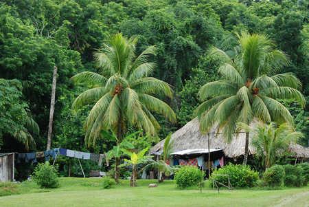Belize jungle house.jpg