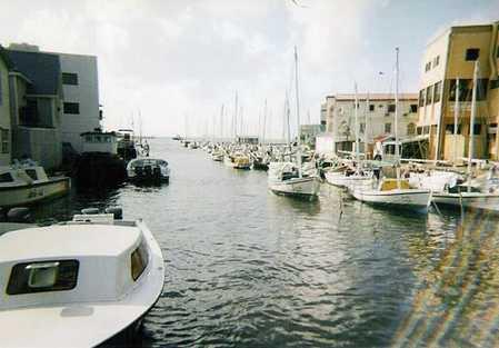 boatishness333.jpg
