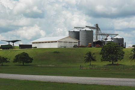 Belizean Industry.jpg