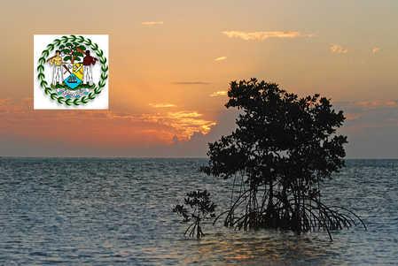 mangrove sunrise.jpg