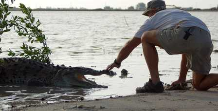 Vince_from_ACES_prepares_to_snare_a_croc_that_couldn't_be_caught_by_conventional_means_because_it's_teeth_had_fallen_out_from_an_unknown_illness..jpg