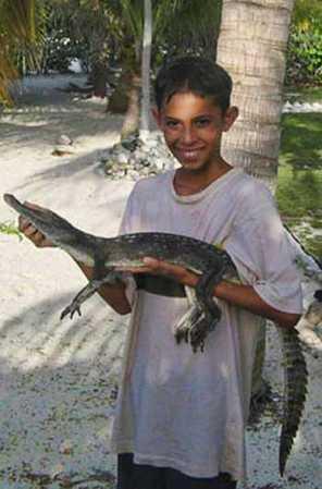 crocodile-002-b.jpg