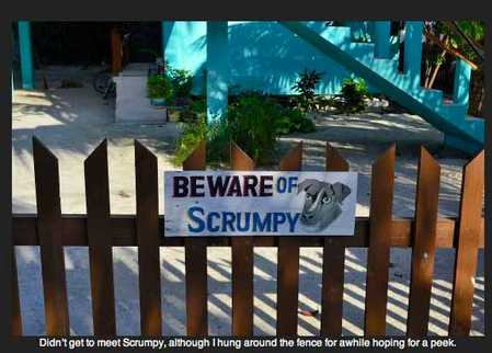 scrumpy.jpg