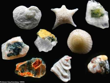 sand grains magnified.jpg