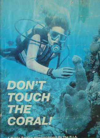 Don't_touch_the_coral.jpg