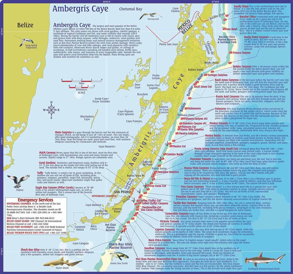 Ambergris Caye Dive Maps, Ambergris Caye, San Pedro, Caribbean and ...
