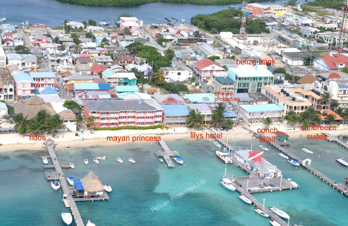 I'll See You at Fido's | Ambergris Today | Breaking News ...  |Fidos San Pedro Belize