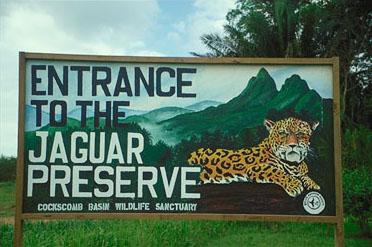 Cockscomb Wildlife Sanctuary and Jaguar Preserve