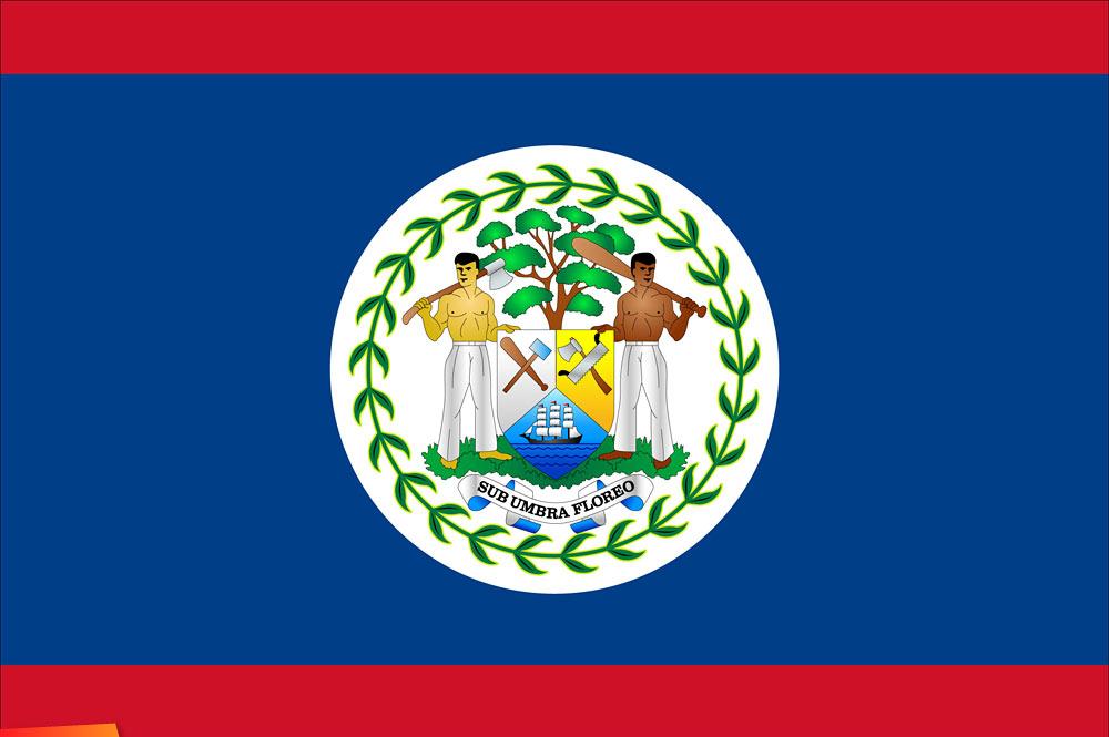 Image result for belize flag